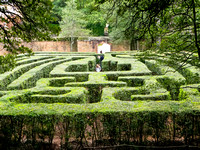 Maze at Governor's House - Williamsburg, VA